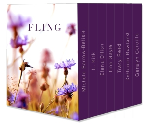 fling_box_set_mockup_v4